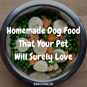 Homemade Dog Food That Your Pet Will Surely Love