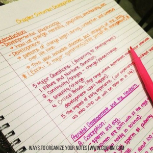 Ways to Organize Your Notes